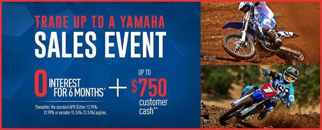 Yamaha Utility ATV Sale